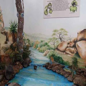 Khami Site Museum Display