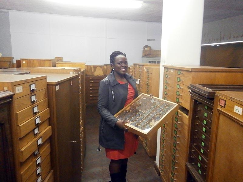 Kudzai Mafuwe - Curator of Ntomology